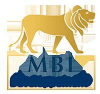 Réseau MBI Développement